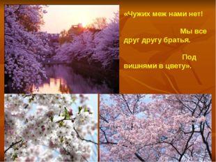 « «Чужих меж нами нет! Мы все друг другу братья. Под вишнями в цвету». Кобая
