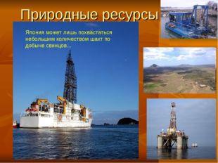 Природные ресурсы Япония может лишь похвастаться небольшим количеством шахт