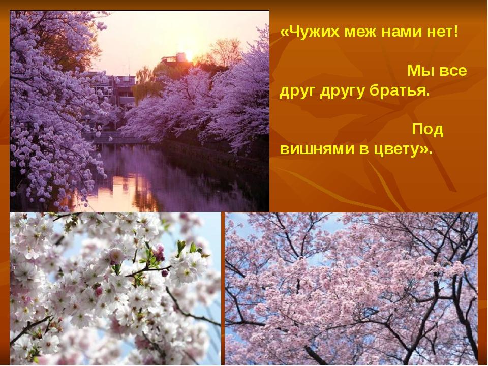 « «Чужих меж нами нет! Мы все друг другу братья. Под вишнями в цвету». Кобая...