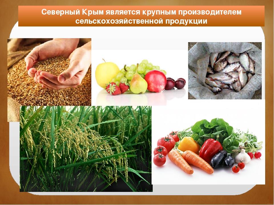 Северный Крым является крупным производителем сельскохозяйственной продукции