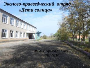 МБОУ Присальская СШ №10 Эколого-краеведческий отряд «Дети солнца»