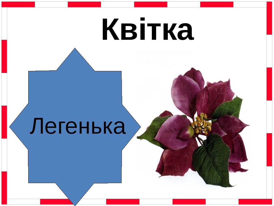 Легенька Квітка