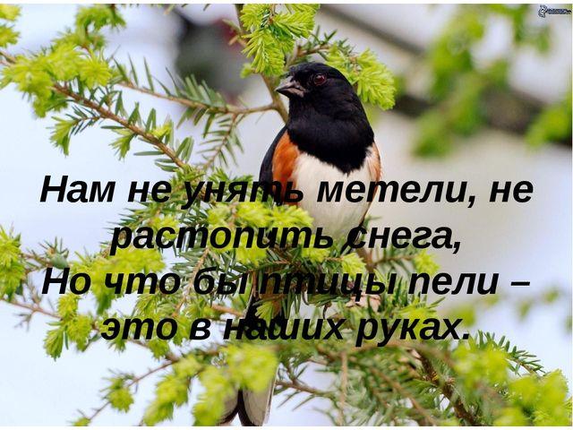 Нам не унять метели, не растопить снега, Но что бы птицы пели – это в наших р...