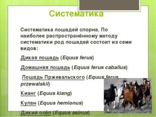 Систематика Систематика лошадей спорна. По наиболее распространённому методу