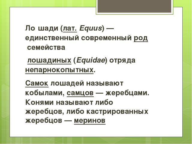 Ло́шади(лат.Equus)— единственный современныйродсемейства лошадиных(Eq...
