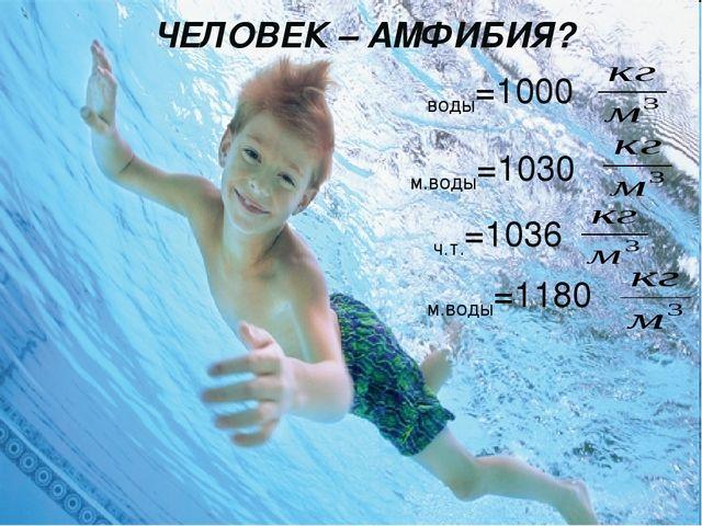 ЧЕЛОВЕК – АМФИБИЯ? ρч.т.=1036 ρм.воды=1030 ρводы=1000 ρм.воды=1180