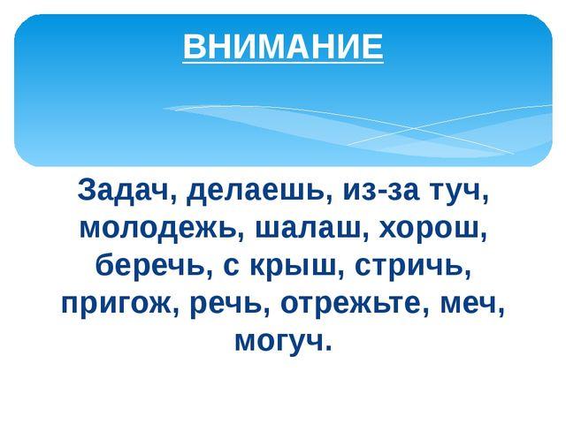 Задач, делаешь, из-за туч, молодежь, шалаш, хорош, беречь, с крыш, стричь, пр...