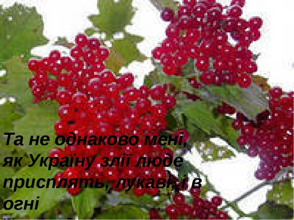 Та не однаково мені, як Україну злії люде присплять, лукаві, і в огні її, окр...