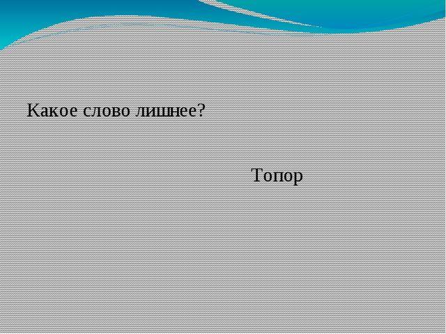 Какое слово лишнее? Топор