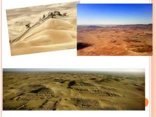 В пустыне чахлой и скупой,
