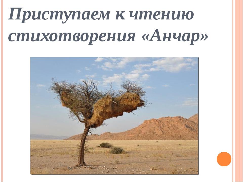 Приступаем к чтению стихотворения «Анчар»