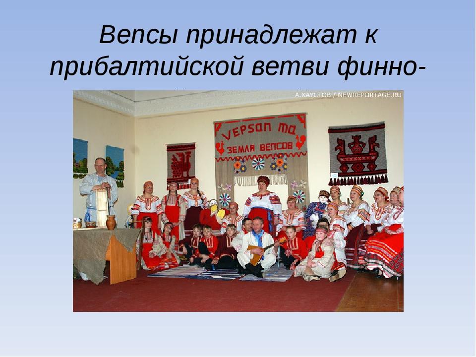 Вепсы принадлежат к прибалтийской ветви финно-угорской языковой семьи.