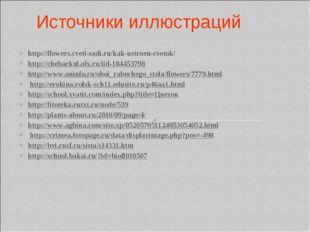 Источники иллюстраций http://flowers.cveti-sadi.ru/kak-ustroen-cvetok/ http:/