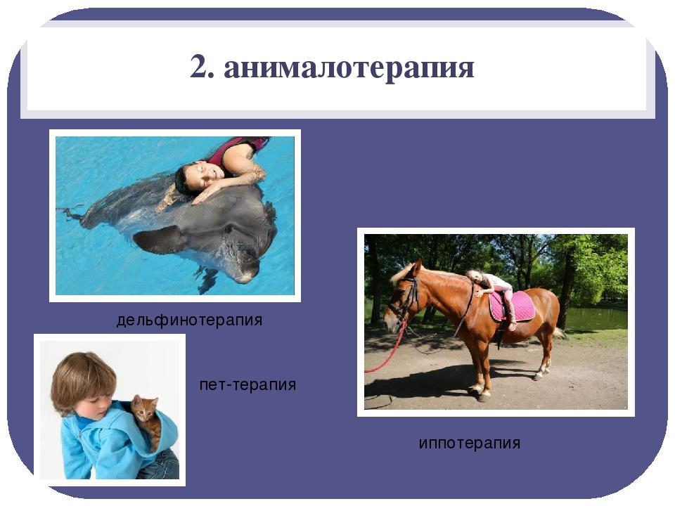 2. анималотерапия пет-терапия иппотерапия дельфинотерапия