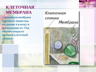 КЛЕТОЧНАЯ МЕМБРАНА Тончайшая мембрана сортирует вещества, входящие в клетку и
