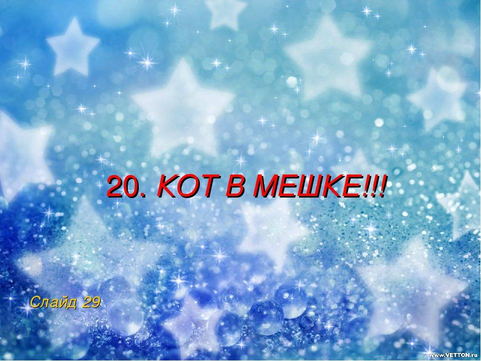 20. КОТ В МЕШКЕ!!! Слайд 29