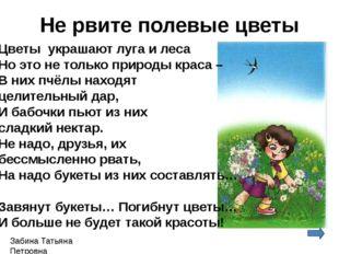 Забина Татьяна Петровна Не рвите полевые цветы Цветы украшают луга и леса Но