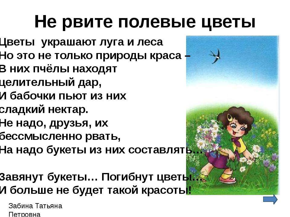 Забина Татьяна Петровна Не рвите полевые цветы Цветы украшают луга и леса Но...