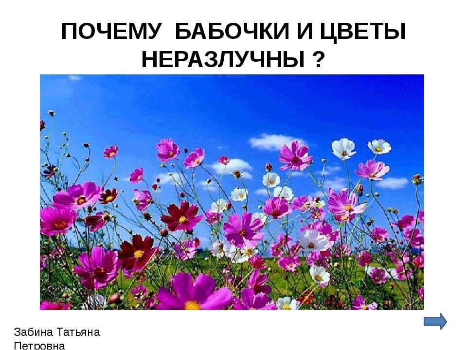 ПОЧЕМУ БАБОЧКИ И ЦВЕТЫ НЕРАЗЛУЧНЫ ? Забина Татьяна Петровна