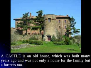 A CASTLE is an old house, which was built many years ago and was not only a h