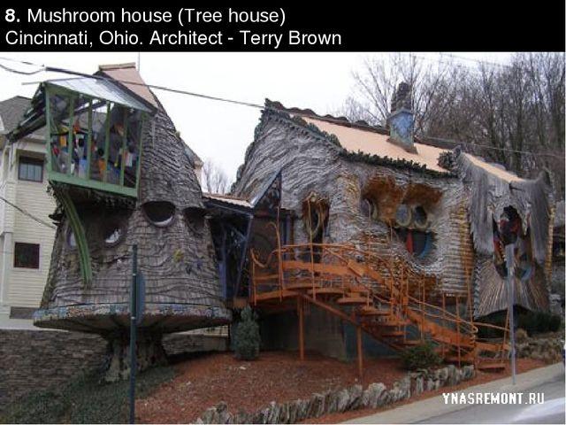 8. Mushroom house (Tree house) Cincinnati, Ohio. Architect - Terry Brown