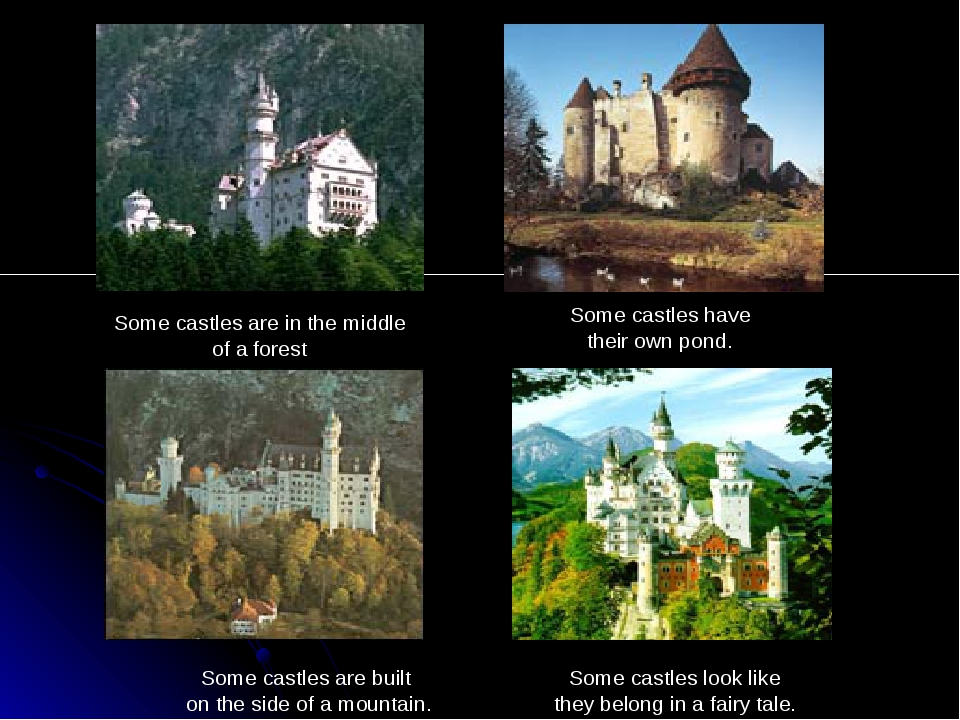 Some castles are in the middle of a forest Some castles have their own pond....