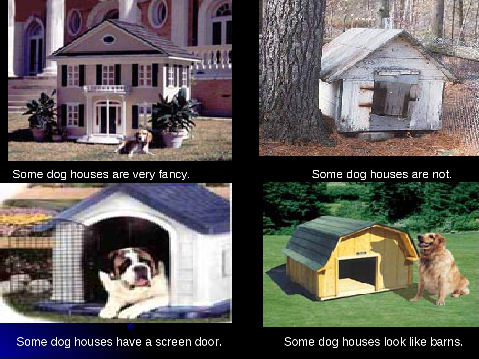 Some dog houses have a screen door. Some dog houses are very fancy. Some dog...