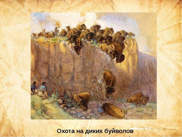 Охота на диких буйволов