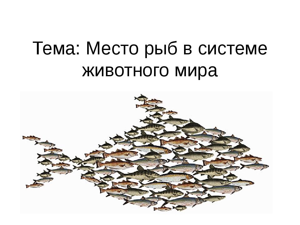 Тема: Место рыб в системе животного мира