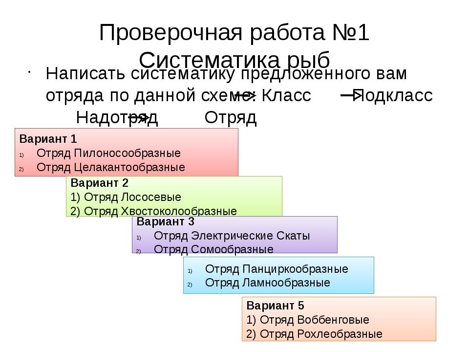 Проверочная работа №1 Систематика рыб Написать систематику предложенного вам...