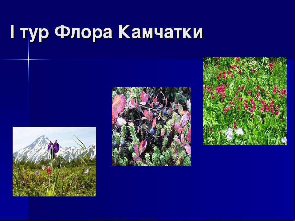 I тур Флора Камчатки
