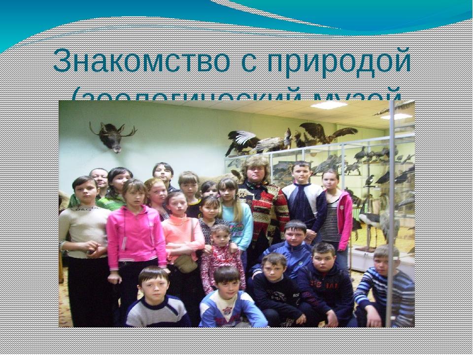 Знакомство с природой (зоологический музей МарГУ)