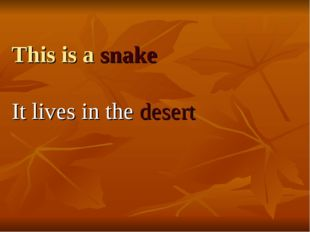 This is a snake It lives in the desert