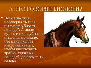 """А ЧТО ГОВОРЯТ БИОЛОГИ? Всем известна поговорка """"Капля никотина убивает лошадь"""