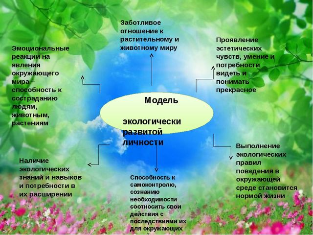 Модель экологически развитой личности Заботливое отношение к растительному и...
