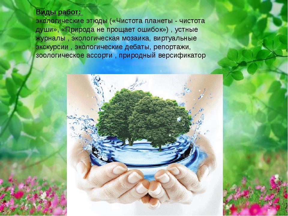 Виды работ: экологические этюды («Чистота планеты - чистота души», «Природа н...