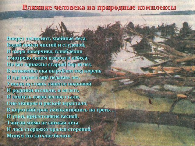 Влияние человека на природные комплексы Вокруг теснились хвойные леса, Водой...