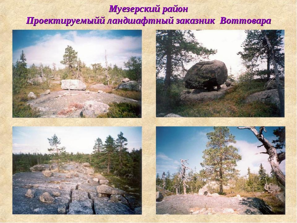 Муезерский район Проектируемыйй ландшафтный заказник Воттовара