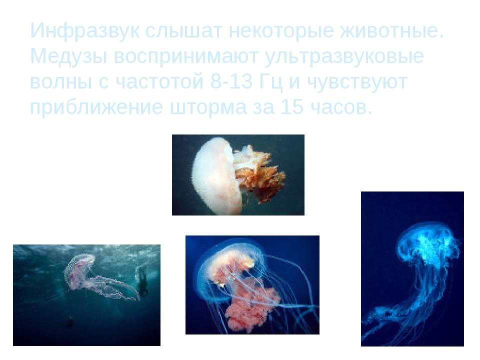Инфразвук слышат некоторые животные. Медузы воспринимают ультразвуковые волны...