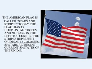 """THE AMERICAN FLAG IS CALLED """"STARS AND STRIPES"""".TODAY THE FLAG HAS 13 HORISO"""