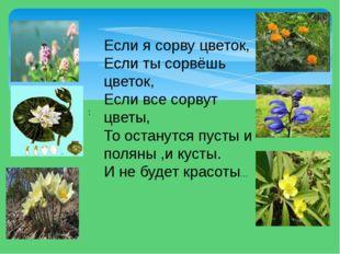 Если я сорву цветок, Если ты сорвёшь цветок, Если все сорвут цветы, То остану
