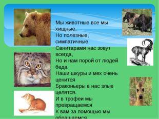 Мы животные все мы хищные, Но полезные, симпатичные Санитарами нас зовут всег