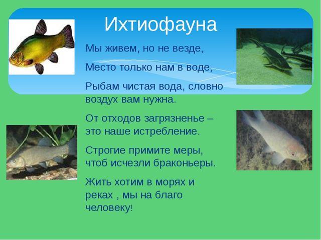 Мы живем, но не везде, Место только нам в воде, Рыбам чистая вода, словно воз...