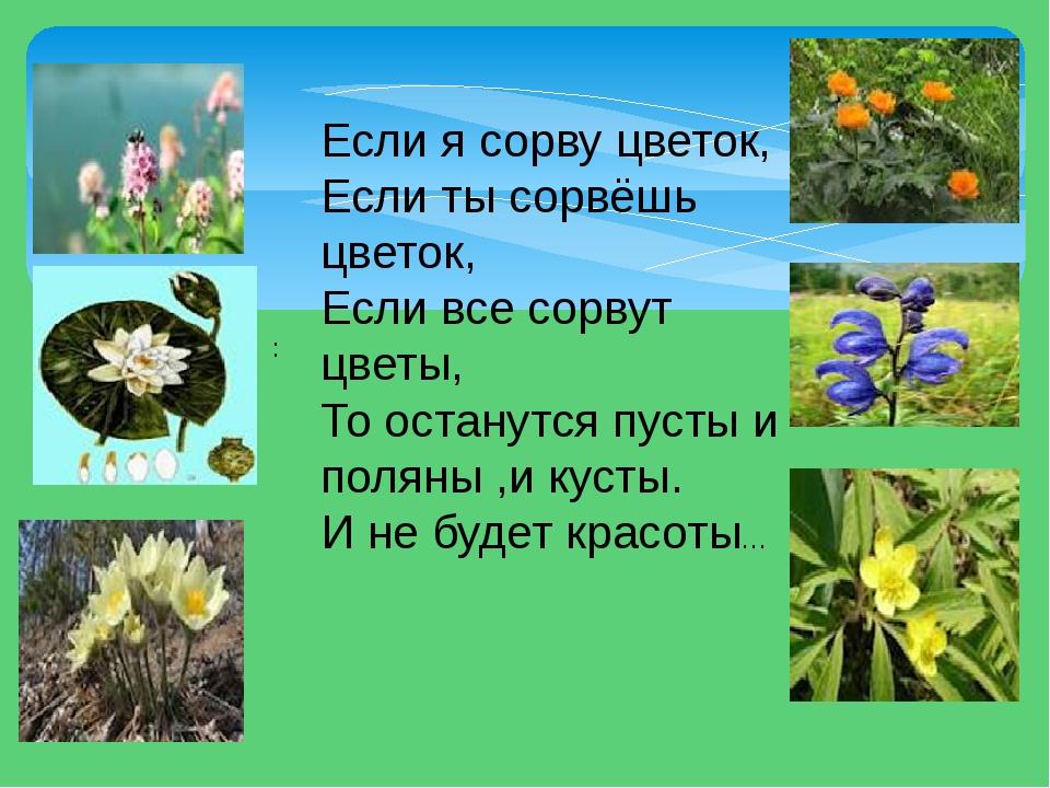 Если я сорву цветок, Если ты сорвёшь цветок, Если все сорвут цветы, То остану...