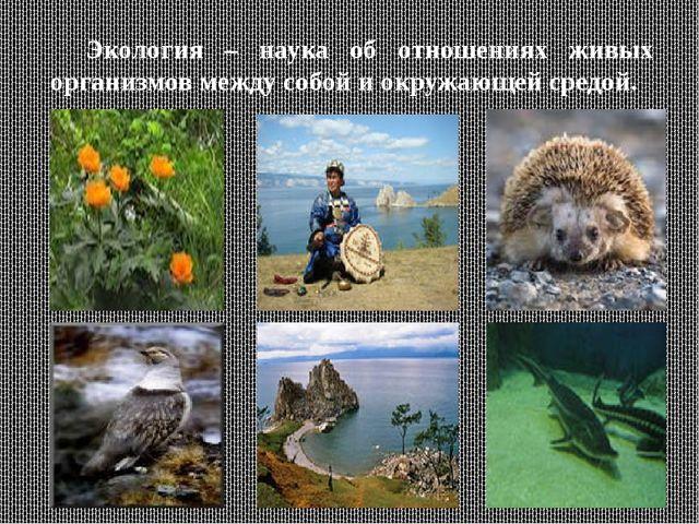 Экология – наука об отношениях живых организмов между собой и окружающей сре...
