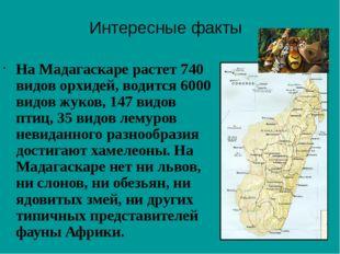 На Мадагаскаре растет 740 видов орхидей, водится 6000 видов жуков, 147 видов