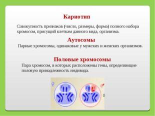 Кариотип Совокупность признаков (число, размеры, форма) полного набора хромос