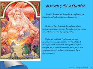 ВОЛХВ С БРАТЬЯМИ Волхв с братьями Волховцем и Рудотоком были дети Славена, вс