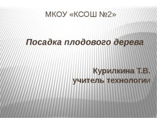 МКОУ «КСОШ №2» Посадка плодового дерева Курилкина Т.В. учитель технологии