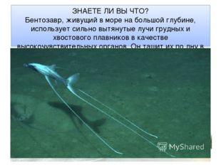 ЗНАЕТЕ ЛИ ВЫ ЧТО? Бентозавр, живущий в море на большой глубине, использует си